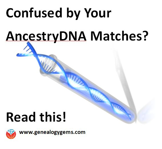 Confused by Your AncestryDNA Matches? Read This Post