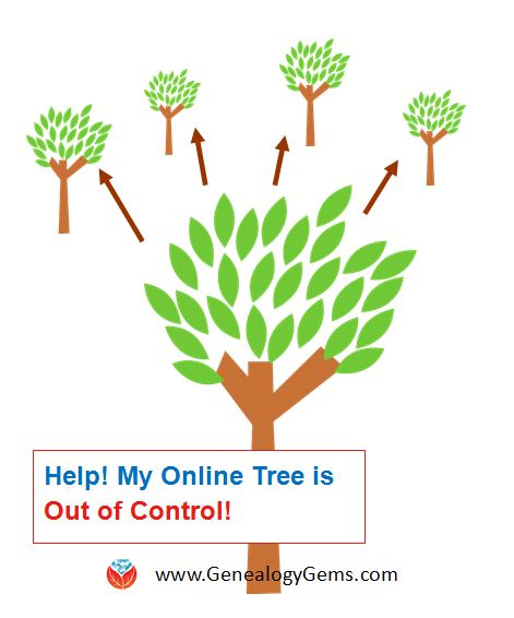 Don't Lose Control When You Post Your Family Tree Online