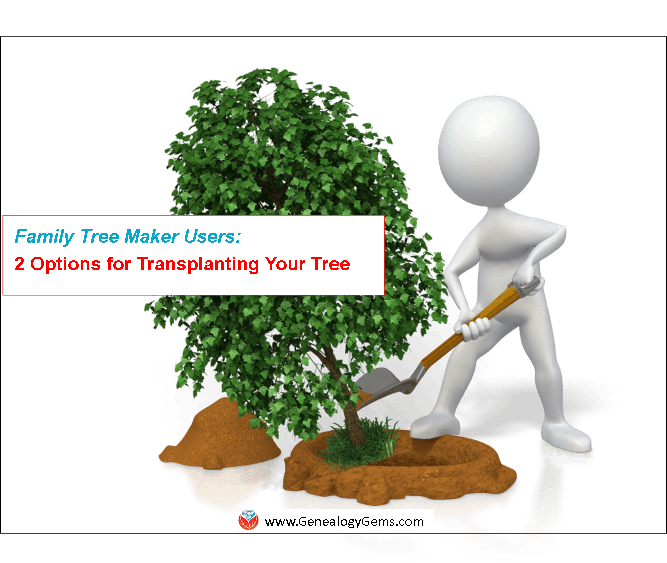 Family Tree Maker Alternatives: Great Offers, and What I Do With My Tree