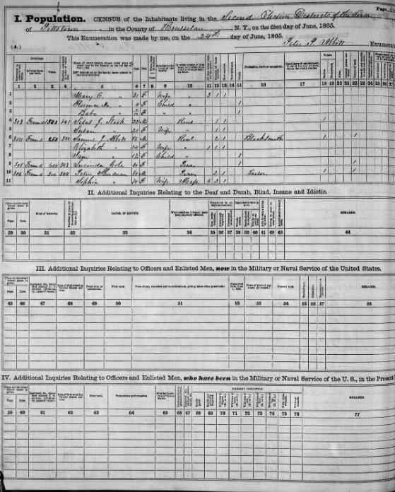New York state census