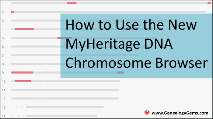 How to Use the NEW MyHeritage DNA Chromosome Browser