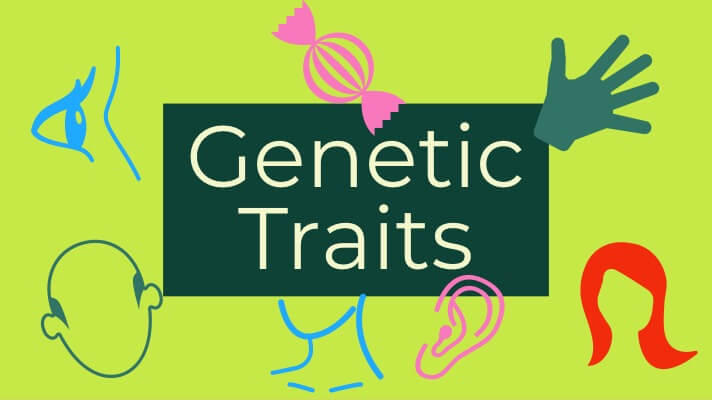 Genetic Traits at Ancestry DNA