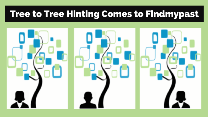 Findmypast Family Trees Opens Tree-to-Tree Hinting